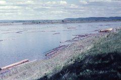 Timmer på Kalixälven 1962
